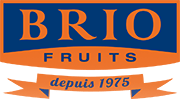 Logo Brio Fruits